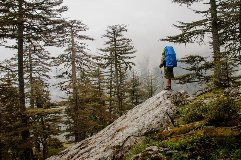 Female hiker hiking up to top of the mountain. Female hiker in khaki raincoat with blue backpack hiking up to top of the mountain stock image
