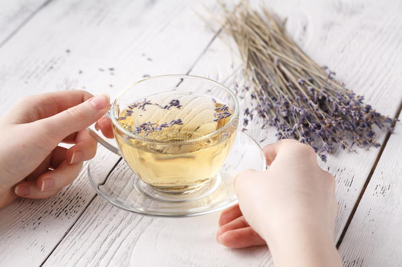 Female hold hot aromatic herbal tea royalty free stock photo
