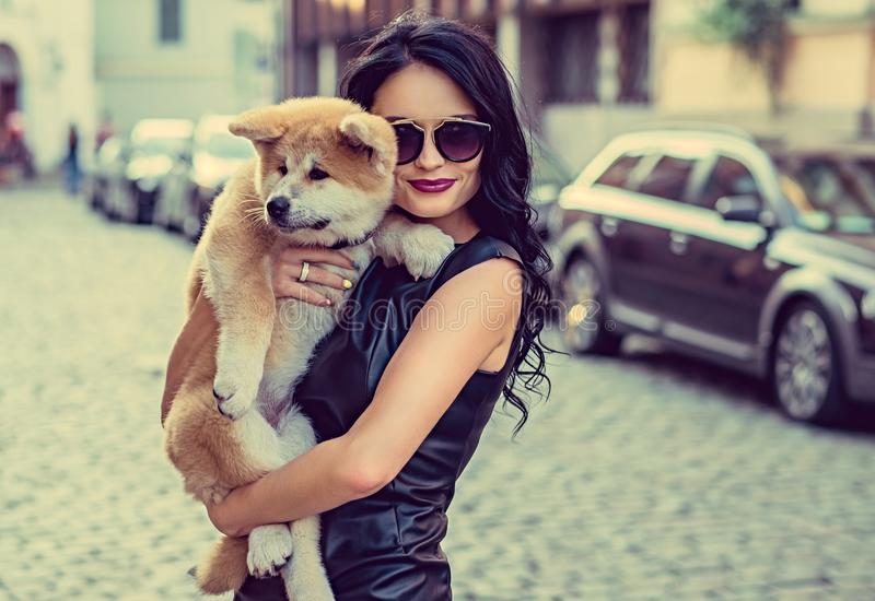 Female holding a dog puppy. royalty free stock photography