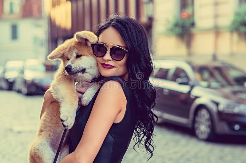 Female holding a dog puppy. royalty free stock image