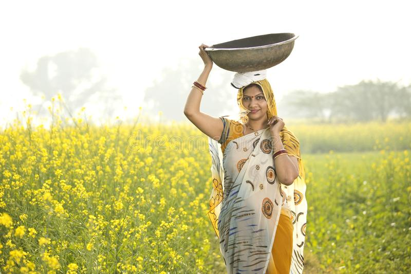 Female Indian farmer carrying iron pan on head in agriculture field. Portrait of rural Indian woman farmer carrying iron pan on head in rapeseed agriculture stock images