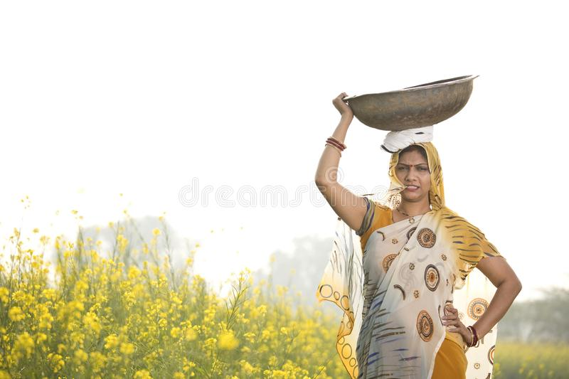 Female Indian farmer carrying iron pan on head in agriculture field. Portrait of rural Indian woman farmer carrying iron pan on head in rapeseed agriculture royalty free stock photography