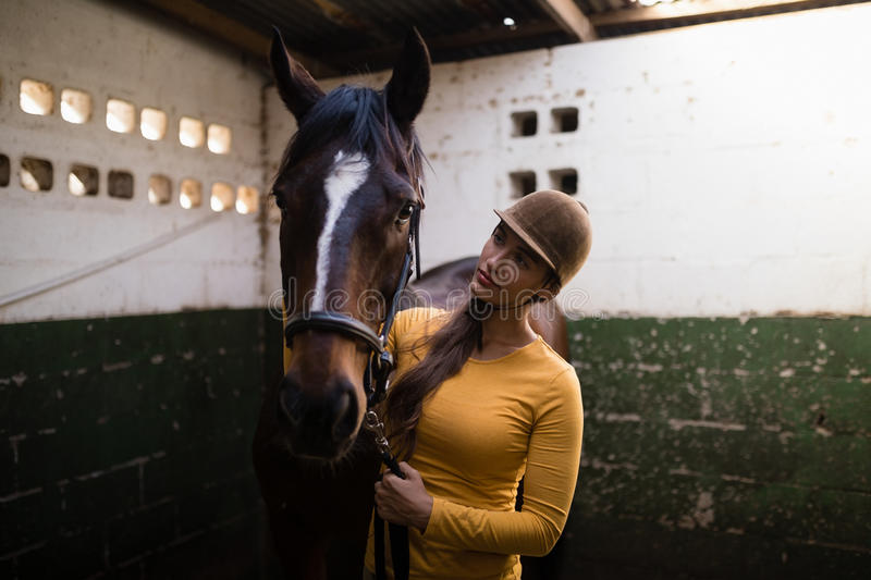 Female jockey looking at horse. While standing in stable stock photography