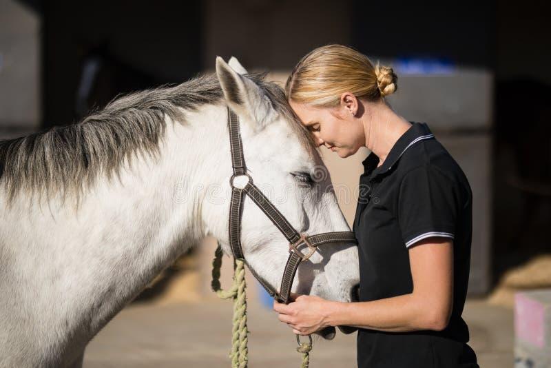 Female jockey loving horse at barn. Side view of female jockey loving horse at barn royalty free stock photography