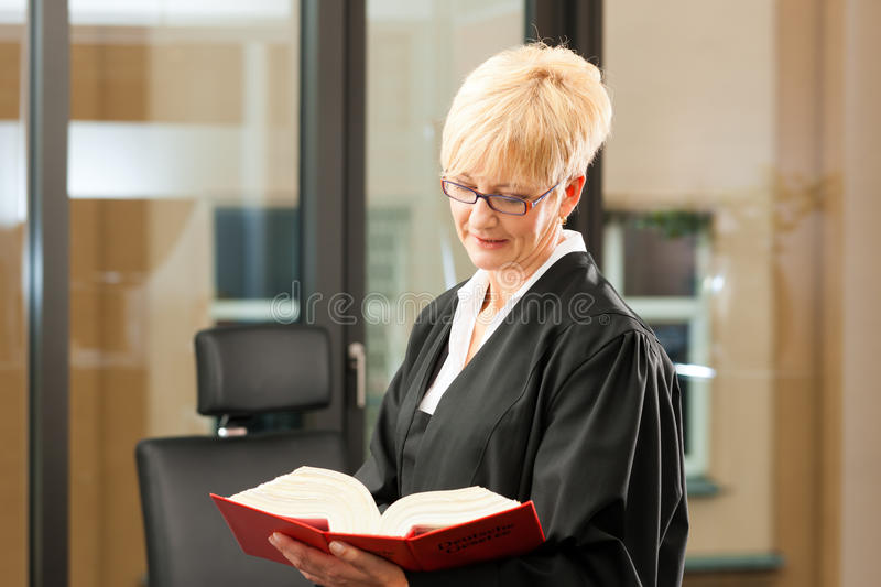 Download Female Lawyer With Civil Law Code Stock Image - Image: 24649065