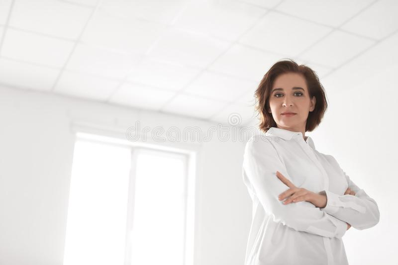 Female lawyer standing in office. Female lawyer standing in light office stock photo
