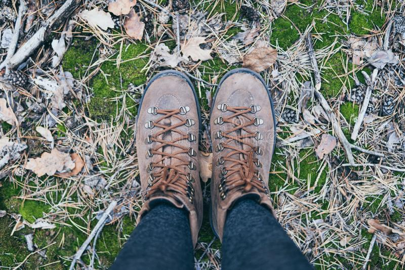 Female leather vintage boots standing on green moss background stock image
