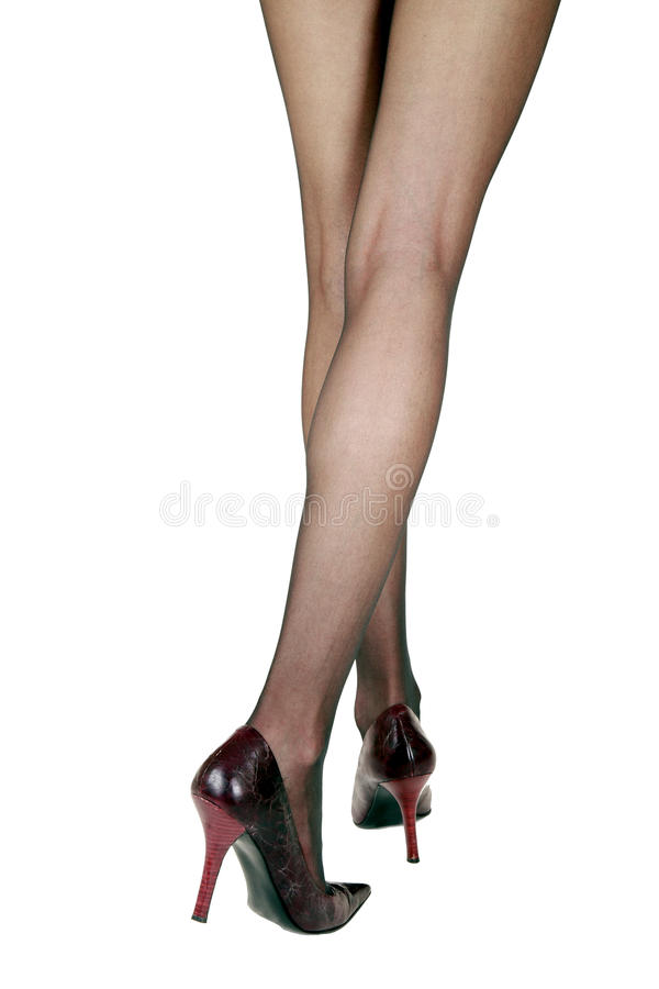 Female legs in stockings stock photos
