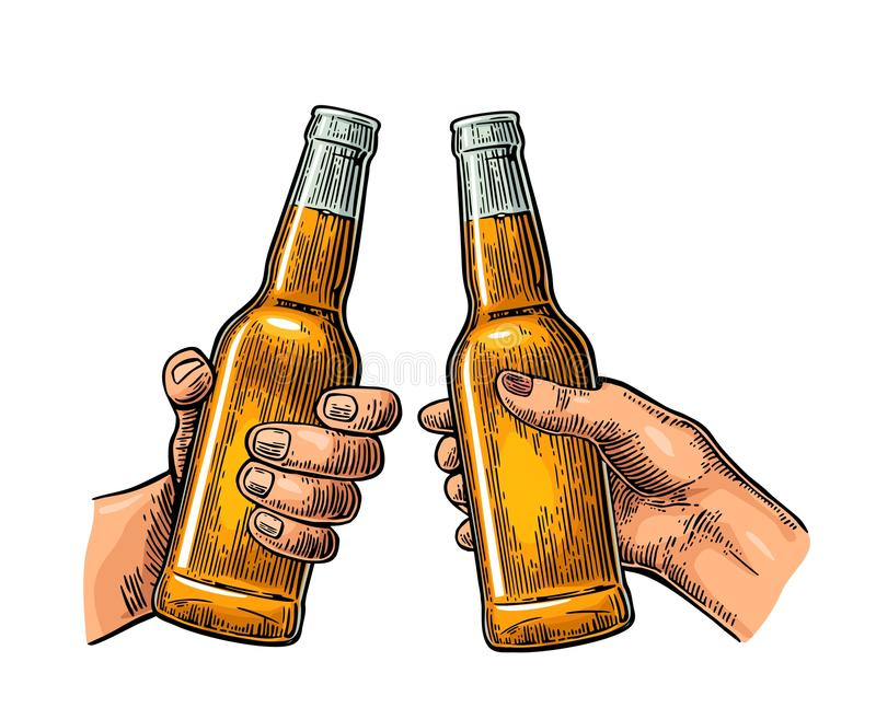 Female and male hands holding and clinking open beer bottles. royalty free illustration
