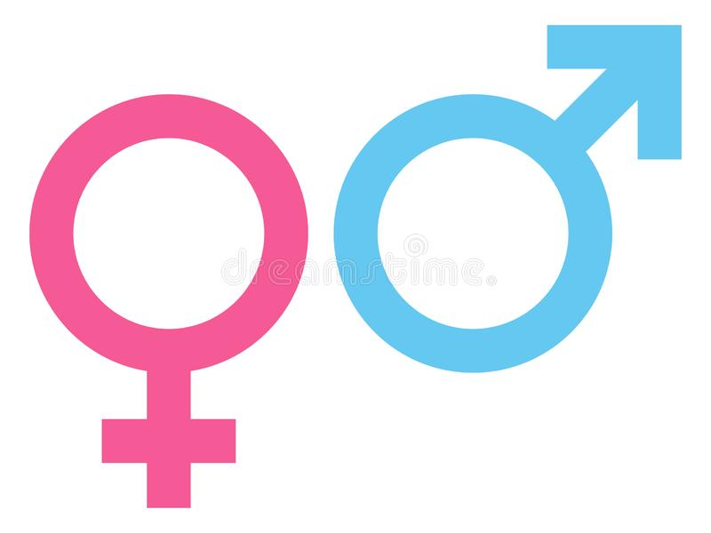 Female And Male Icon Pink And Blue royalty free illustration