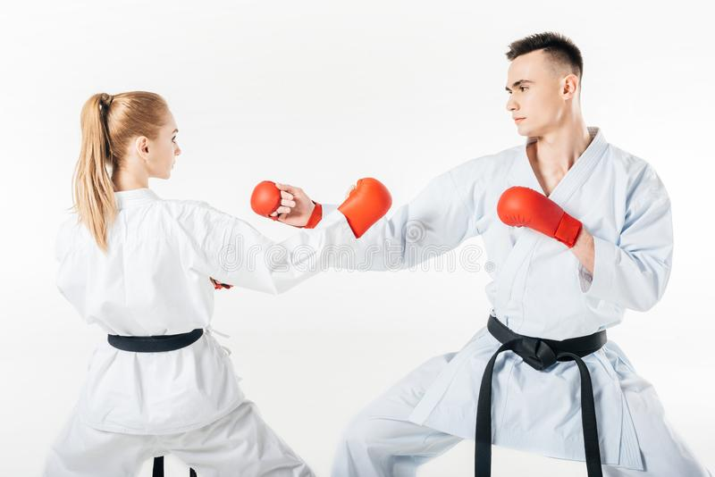 female and male karate fighters with black belts training royalty free stock images