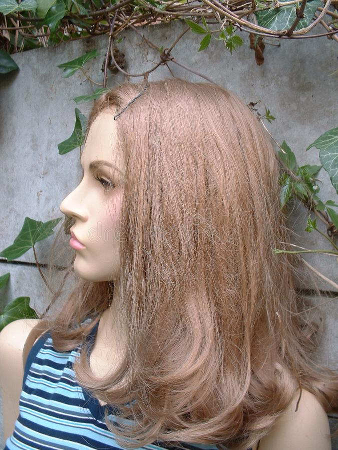 Female Mannequin Stock Photography