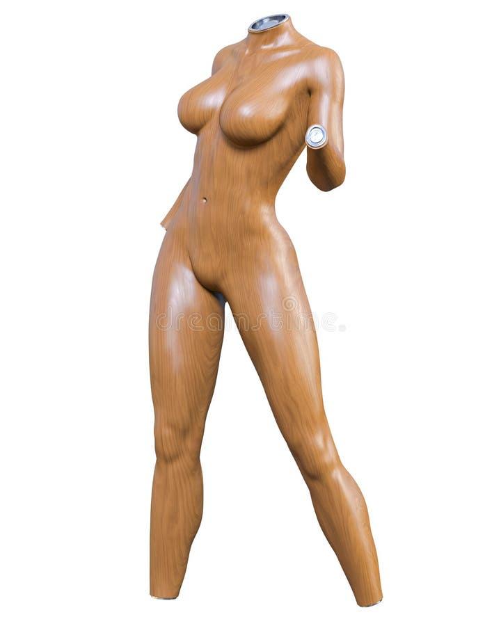 Female mannequin. Torso stock image