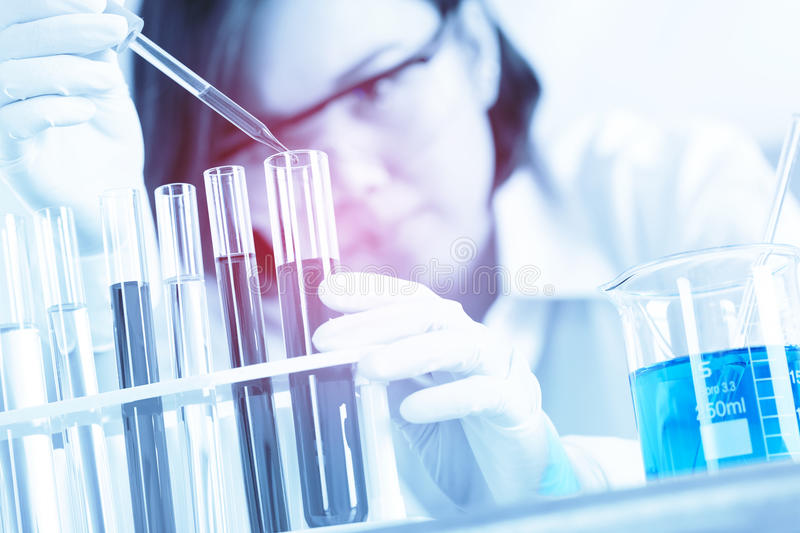 Female medical or scientific researcher using test tube on labor royalty free stock images