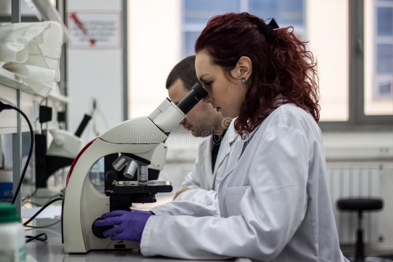 A female medical or scientific researcher or woman doctor looking through a microscope in a laboratory. Young scientist doing royalty free stock photography