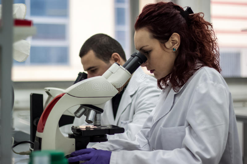 A female medical or scientific researcher or woman doctor looking through a microscope in a laboratory. Young scientist doing stock photo