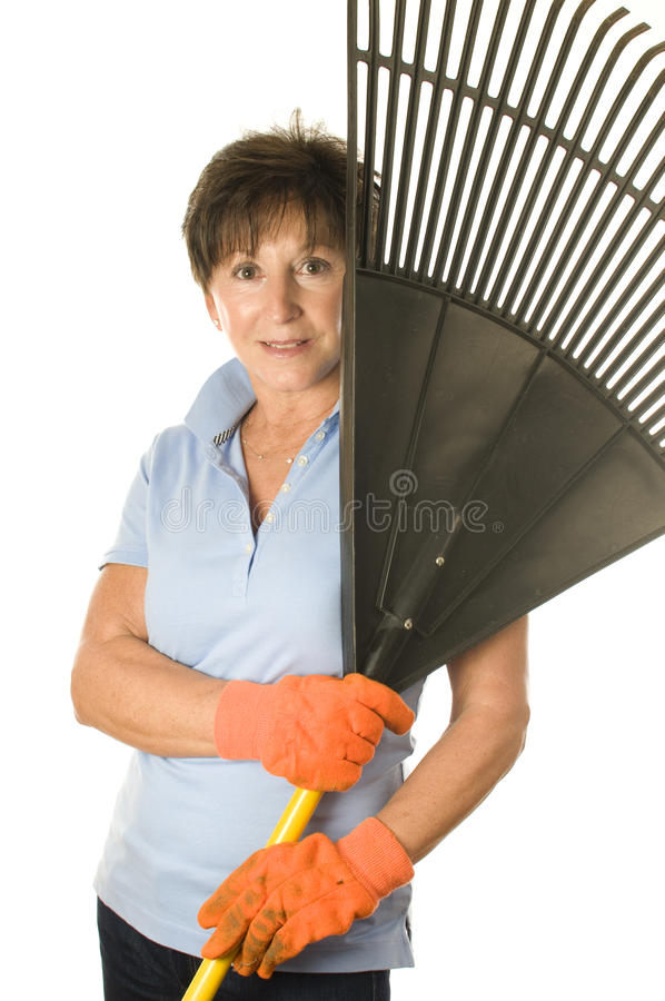 Female middle age senior gardener leaf rake