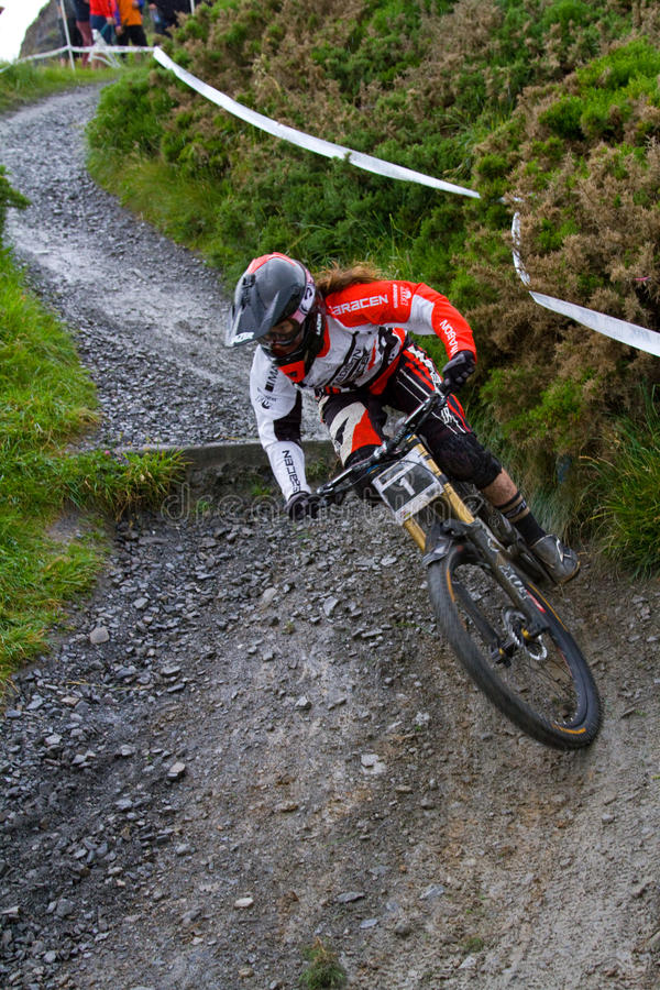 Female mountain biker royalty free stock images