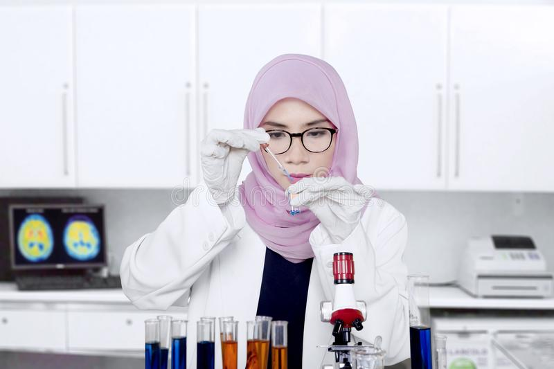 Muslim scientist making chemical experiment. Female Muslim scientist making a chemical experiment using test tube, pipette, and microscope royalty free stock image