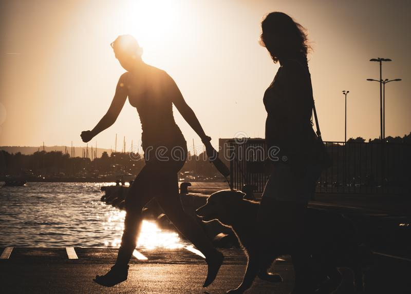 Female persor and her dog, golden retriever is running in a port during the sunset. Girl i with hew golden retriever dog by in harbour.Vintage image royalty free stock images