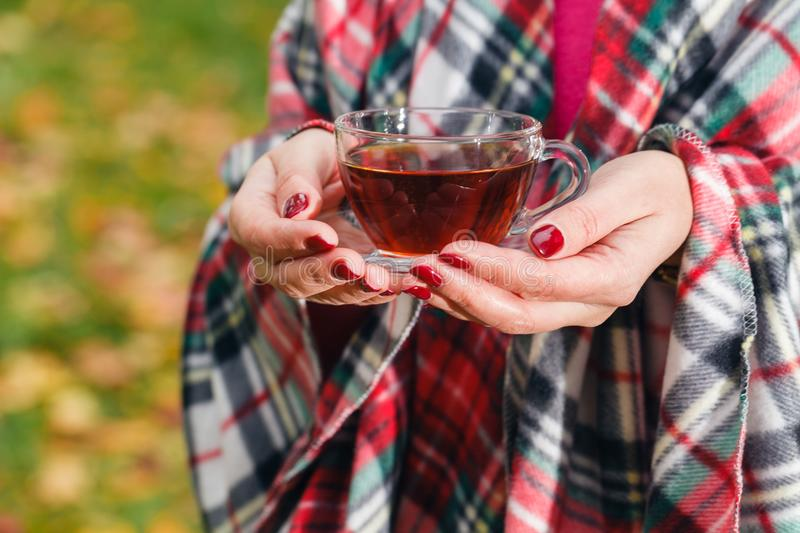 Female in plaid drink hot tea in park royalty free stock photo