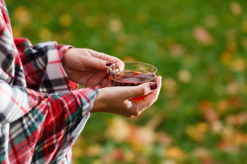 Female in plaid drink hot tea in park stock image