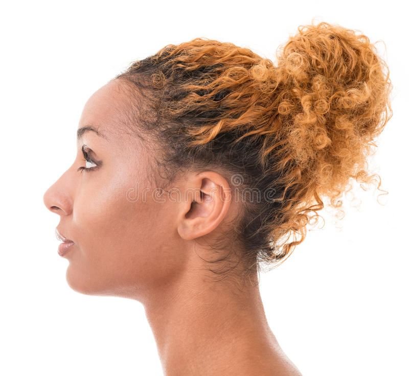 Download Female profile stock photo. Image of face, afro, ethnic - 28087896