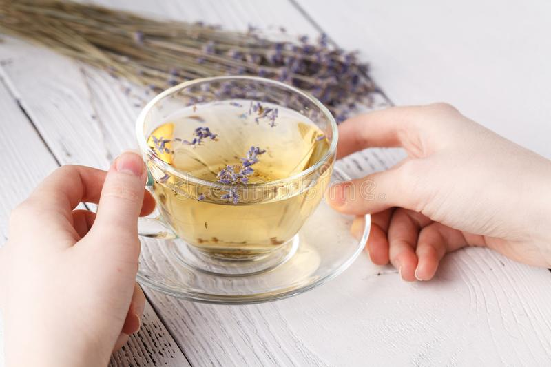 Female relax with cup of herbal tea royalty free stock images