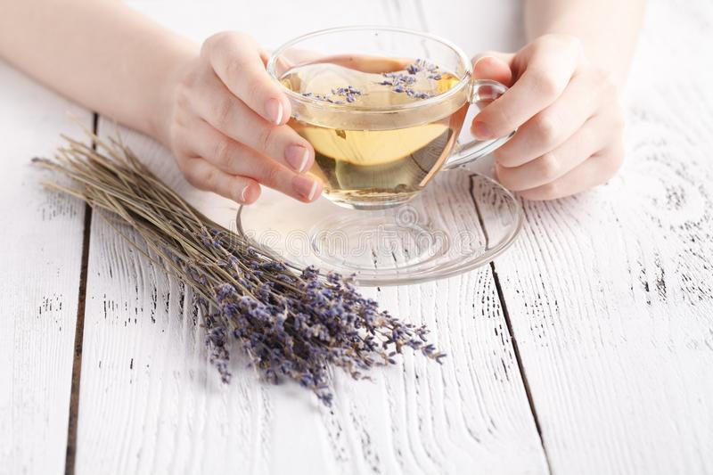 Female relax with cup of herbal tea stock image
