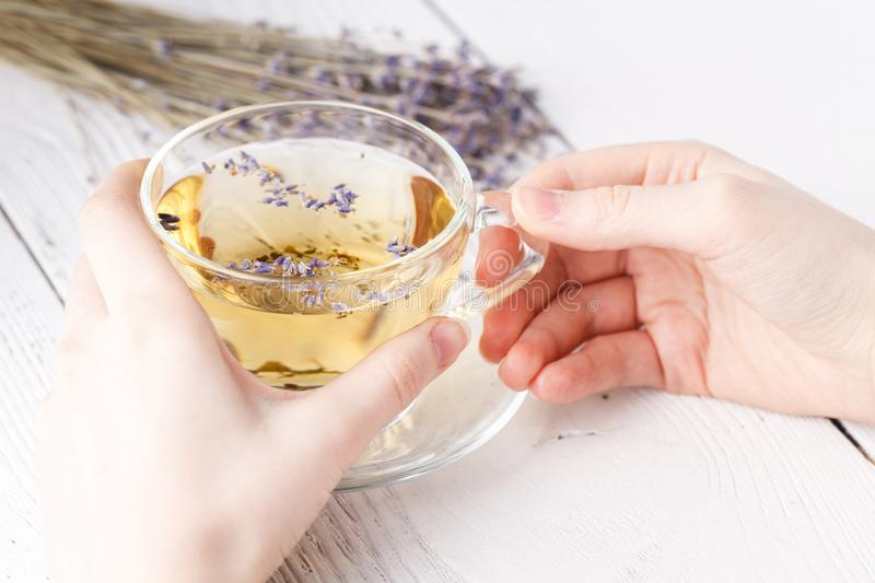 Female relax with cup of herbal tea royalty free stock image