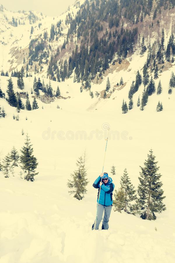 Female rescuer searching for avalanche victim. Probing for survivor royalty free stock photography