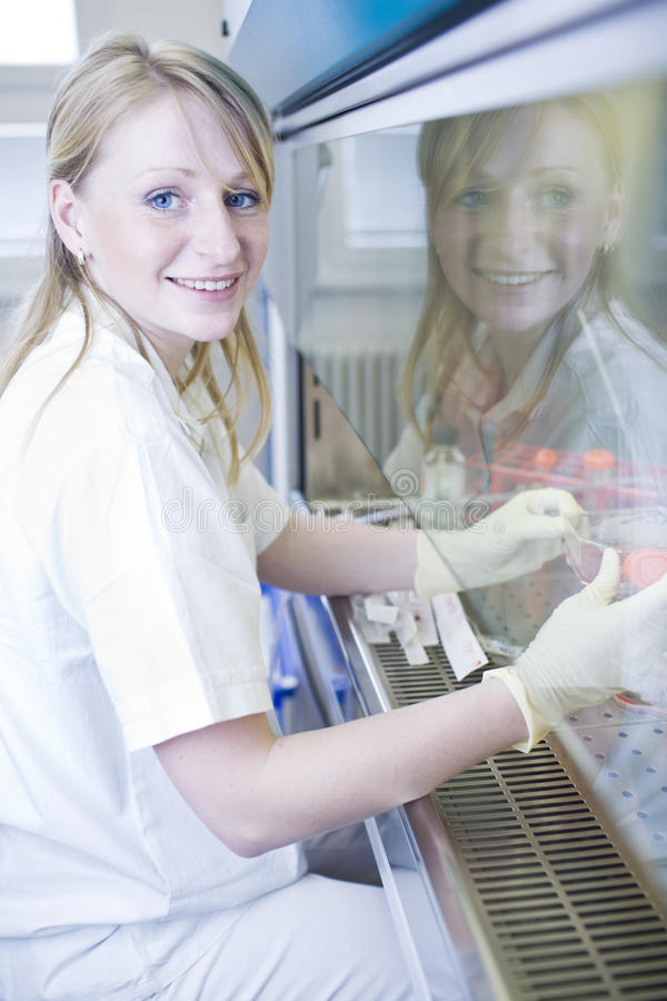 Female researcher doing research in a lab royalty free stock photo