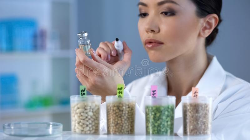 Female researcher holding ampoule with pesticide liquid, grain breeding science stock image