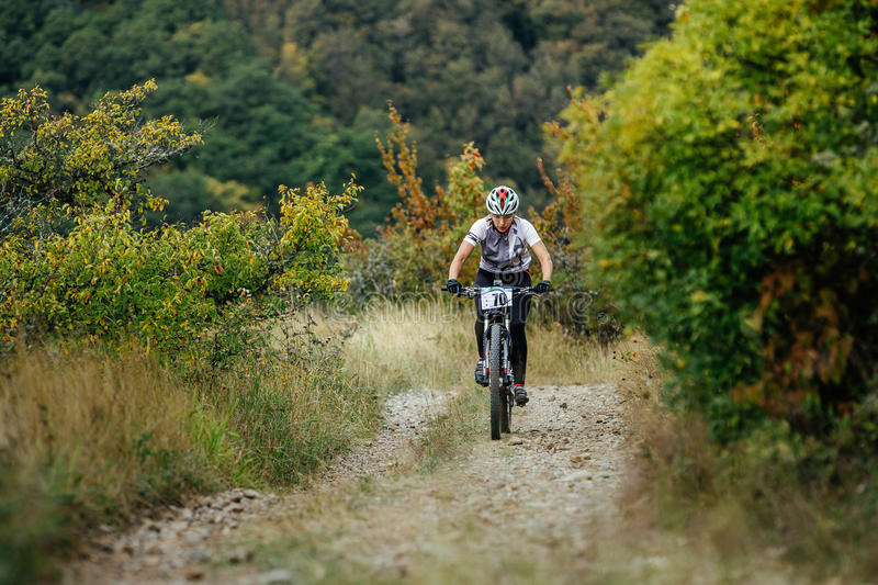 Female rider cyclist riding uphill among woods and grass stock photo