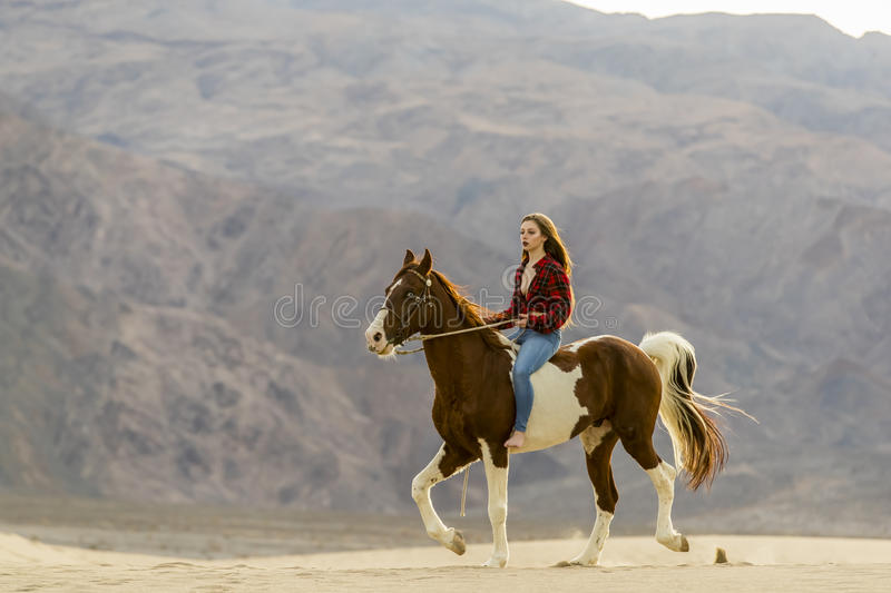 Female Rider And Her Horse. A female model riding her horse through the Mohave Desert stock photos