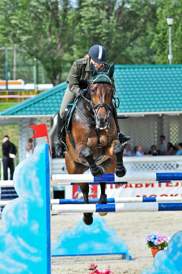 Download Female rider on jump horse editorial image. Image of horse - 22089585