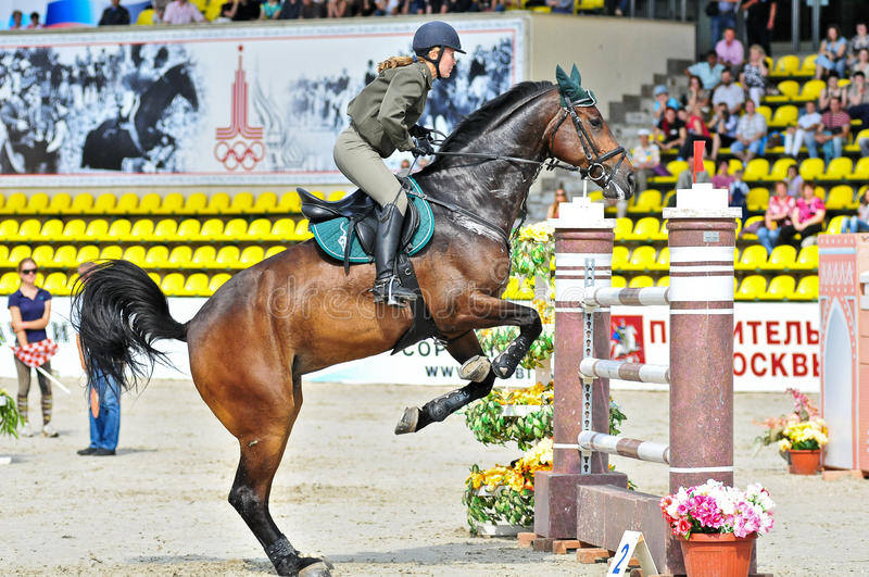 Download Female rider on jump horse editorial photography. Image of breed - 22089607