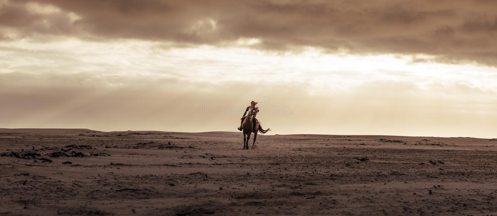 Female riding her stallion at the sea shore stock photography