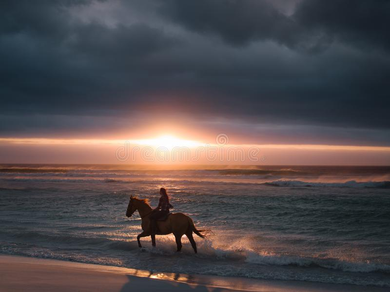 Female riding horse along the beach. Silhouette of a female riding horse along the beach. Woman horse riding on the sea shore at sunset stock photography