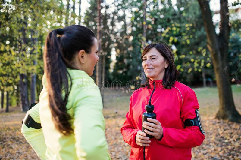 Female runners with water bottle and smartphones standing outdoors in forest. royalty free stock photos