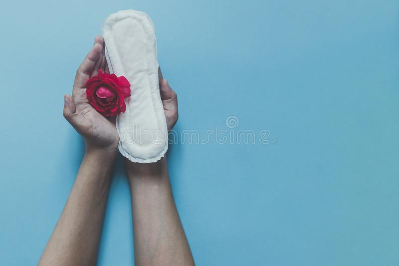 Female`s hand holding sanitary napkins with red rose on it. Period days concept showing feminine menstrual cycle. Female`s hygie royalty free stock photography