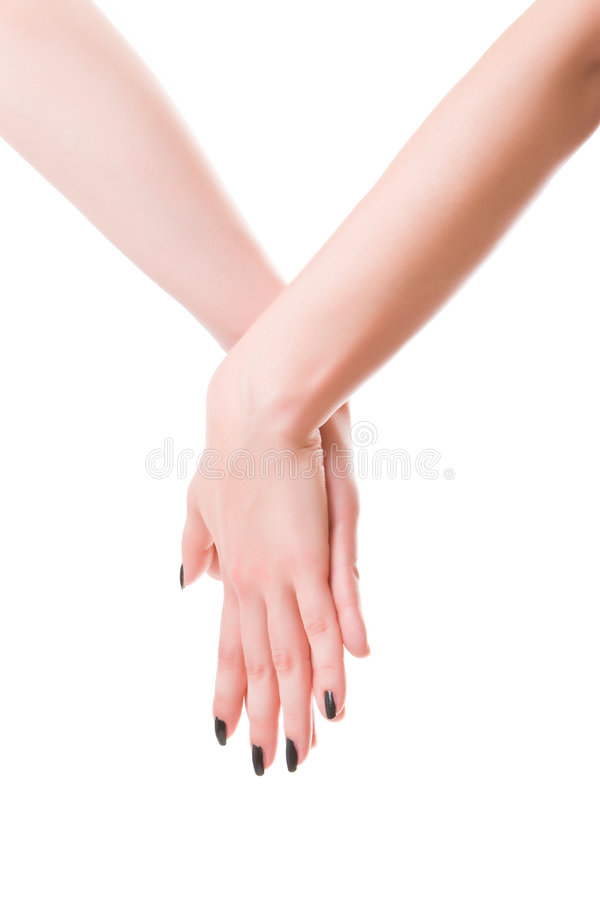 Free Female S Hands Stock Photo - 9140980