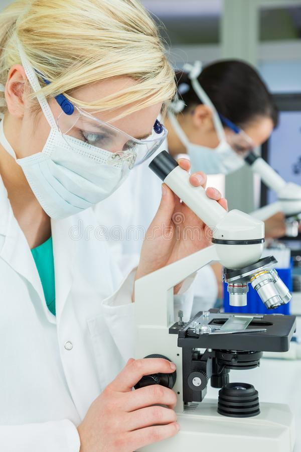 Female Scientific Research Team Scientists Using Microscopes in a Laboratory stock photography