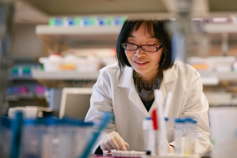 Female Scientist at a Biomedical Laboratory stock images