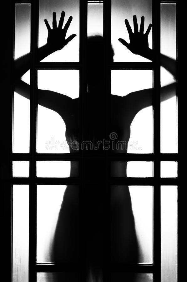 Female silhouette. Silhouette of the female body royalty free stock photography