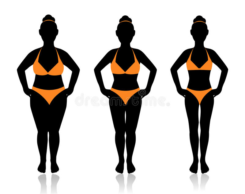 Female silhouette in different weights. Female silhouette in a bathing suit at a different weight and the effect of diet vector illustration
