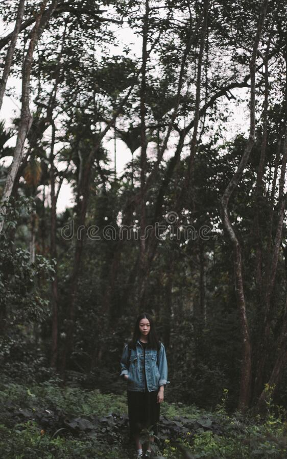 Female Standing In Forest Free Public Domain Cc0 Image