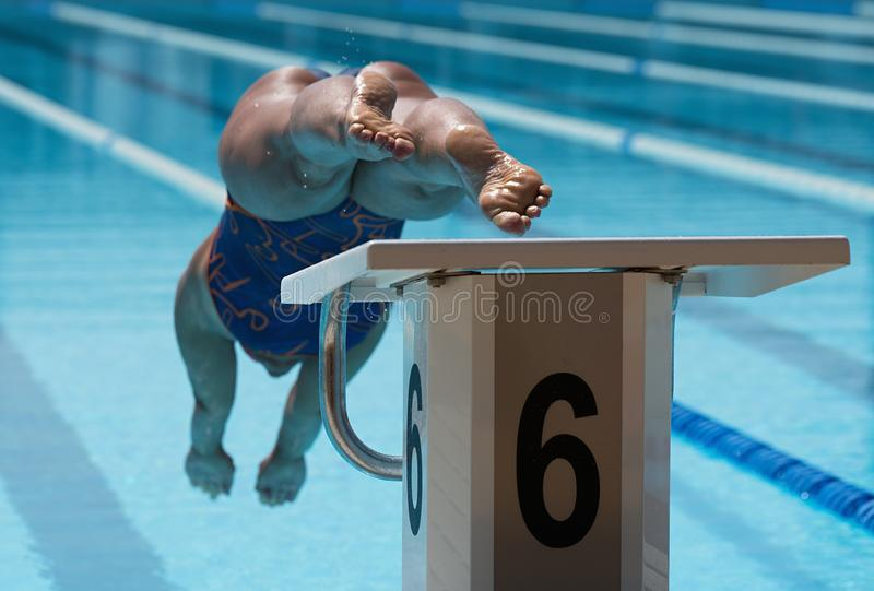 Female swimmer jumps off starting block royalty free stock photo