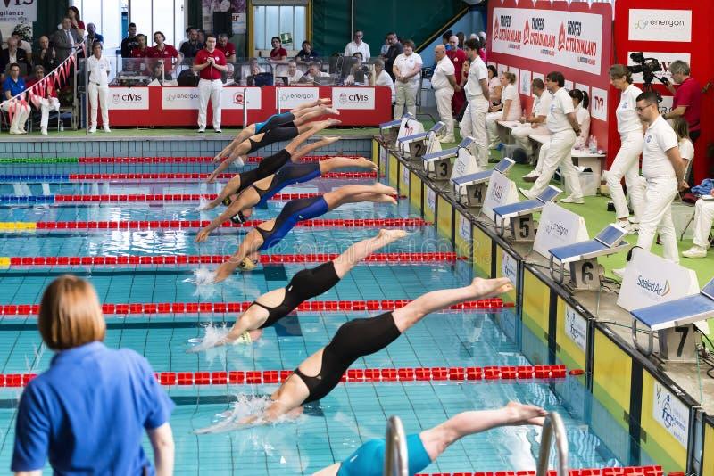Female swimmers starting during 7th Trofeo citta di Milano swimming competition. stock photo