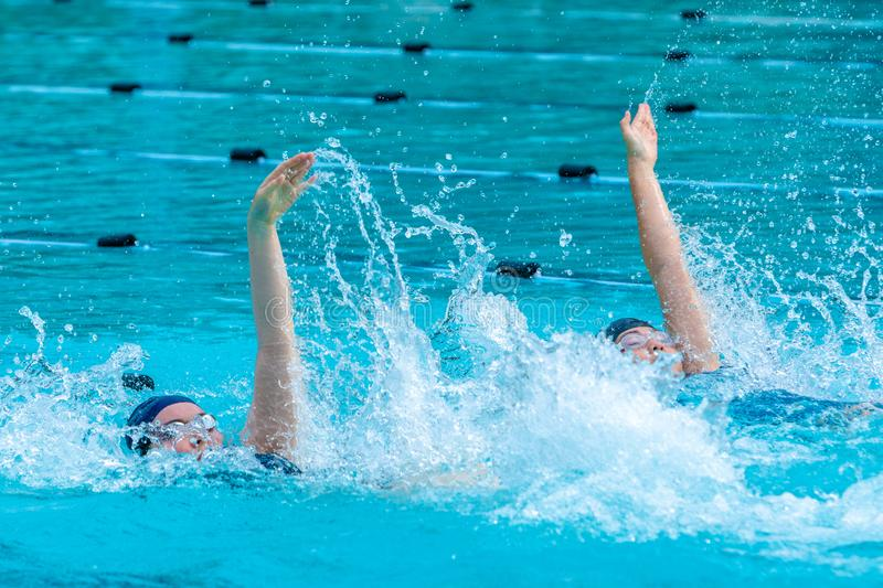 Female swimmers swimming back stroke royalty free stock photos
